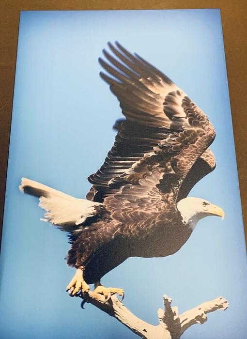 Regional Photographer Exhibit Opens Feb. 2 at SIC's Hise Museum