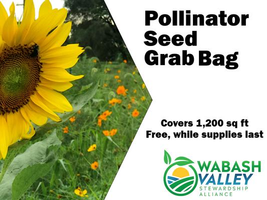 Stewardship Alliance Group Offering Free Pollinator Seed